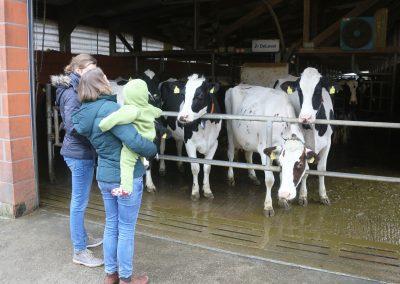 Stall der Milchhof Reeßum KG